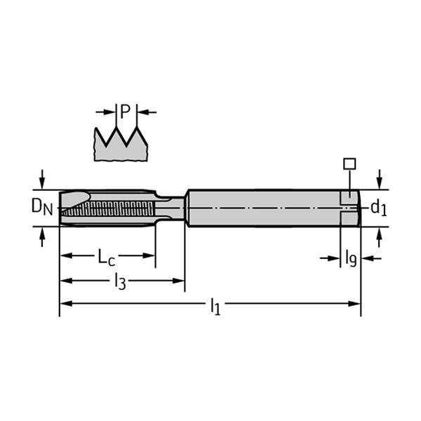 Walter 2021616-M10 Machos de roscar a máquina HSS-E-PM